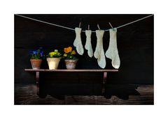 Der Socken