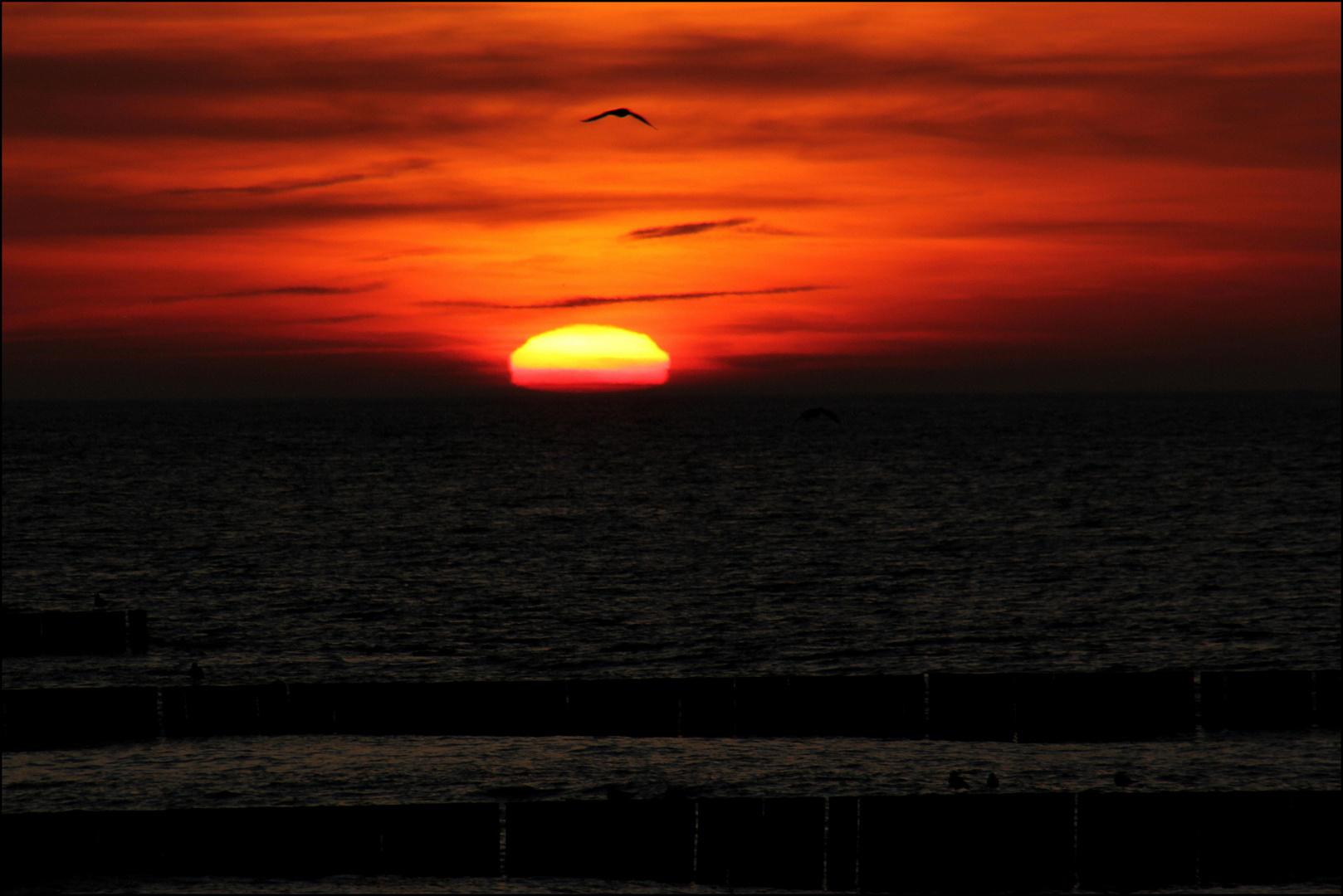 Der Sonne...