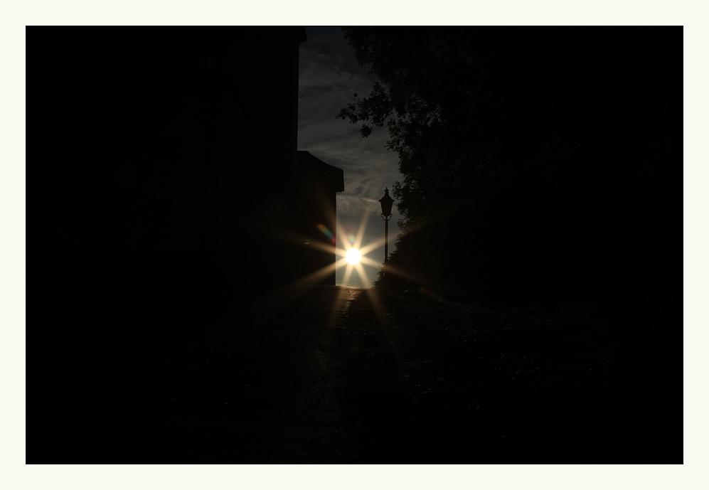~~~ Der Sonne entgegen ~~~