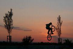 Der Sonne entgegen (2)