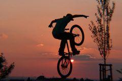 Der Sonne entgegen (3)