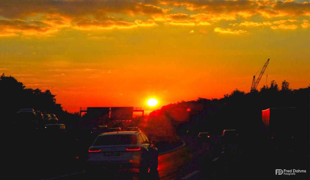 Der Sonne entgegen