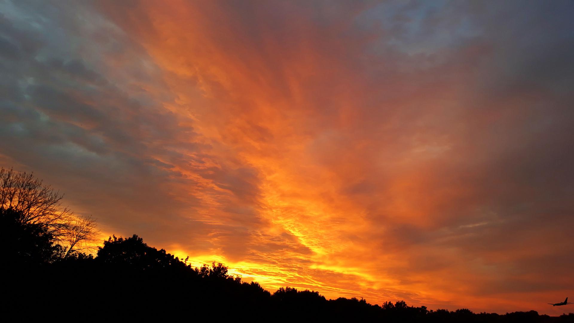 Der Sonne entgegen geflogen