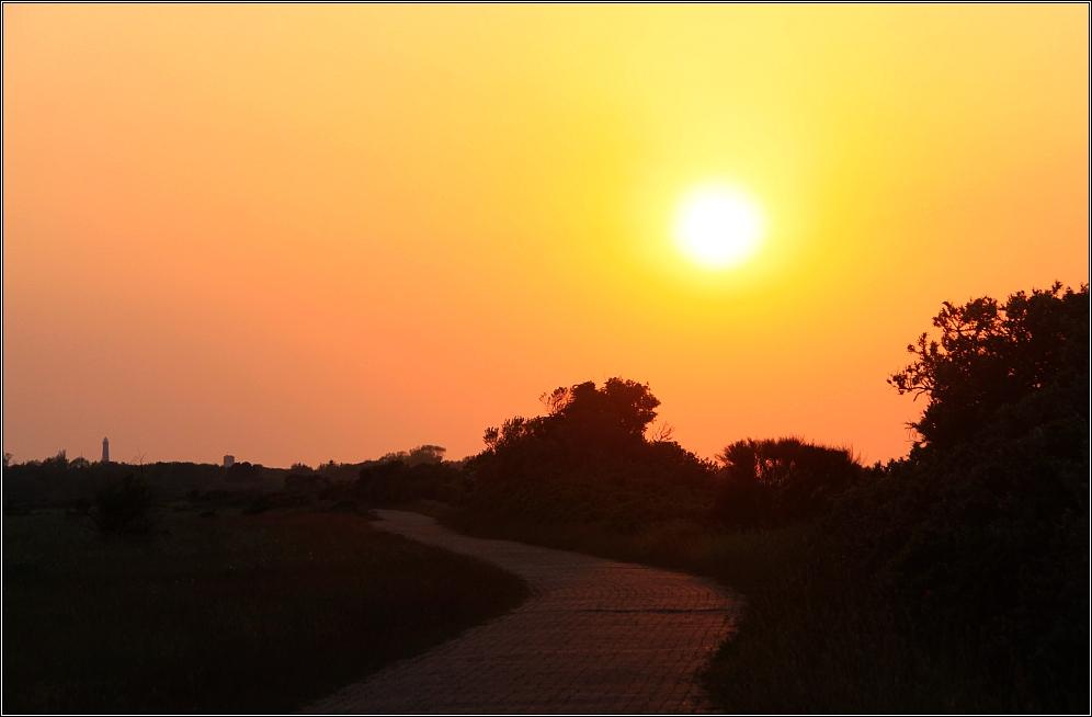 Der Sonne ...