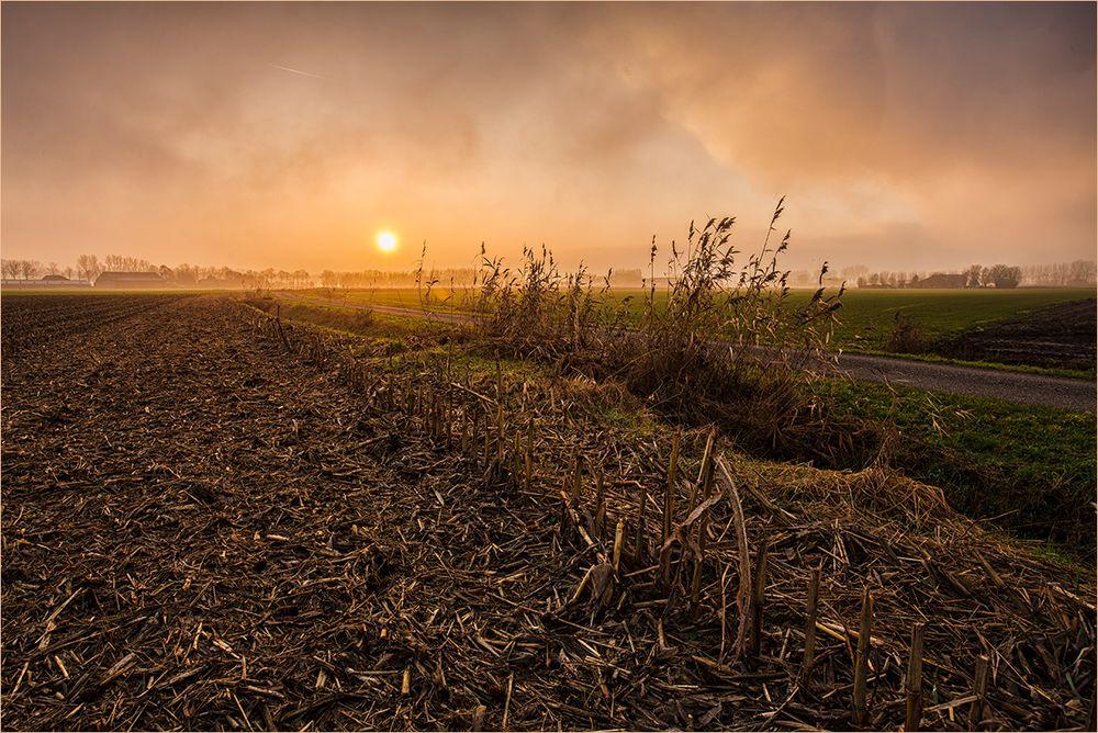 Der Sonne hinterher gefahren ...