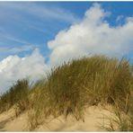 Der spannendste Moment beim Stapfen durch die Sanddüne...