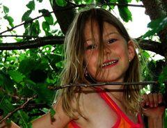 Der Spatz im Kirschbaum 2