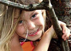 Der Spatz in meinem Kirschbaum 4