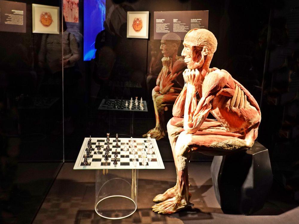 der Spiegel-Schachspieler