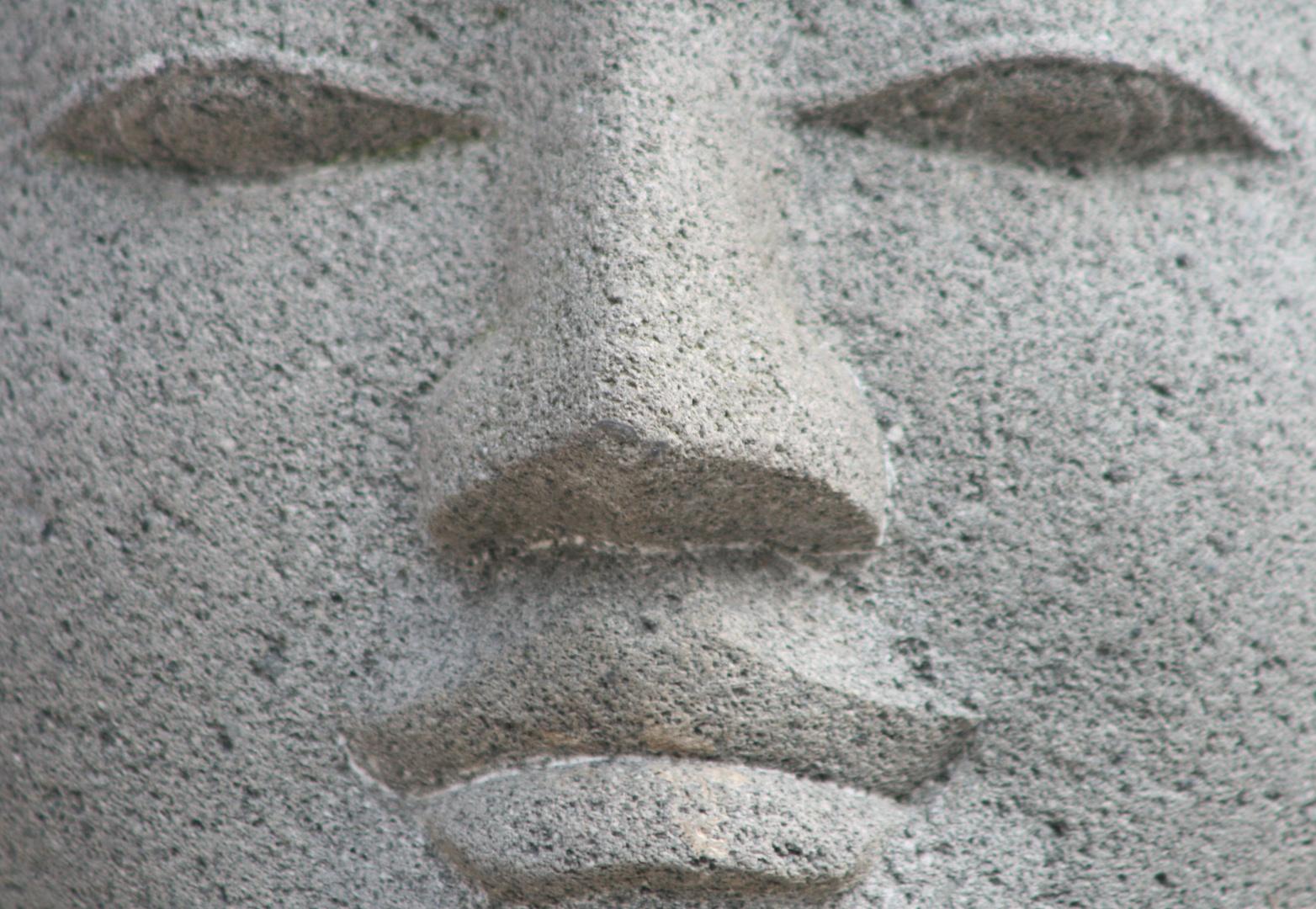 der steinerne Blick