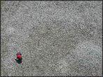 Der Steinleger vom Tetraeder I