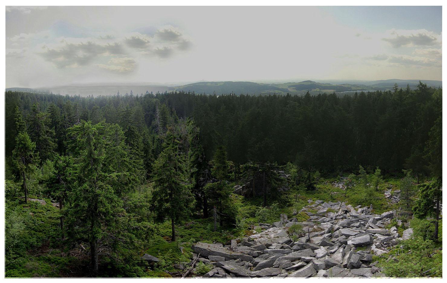 Der Steinwald