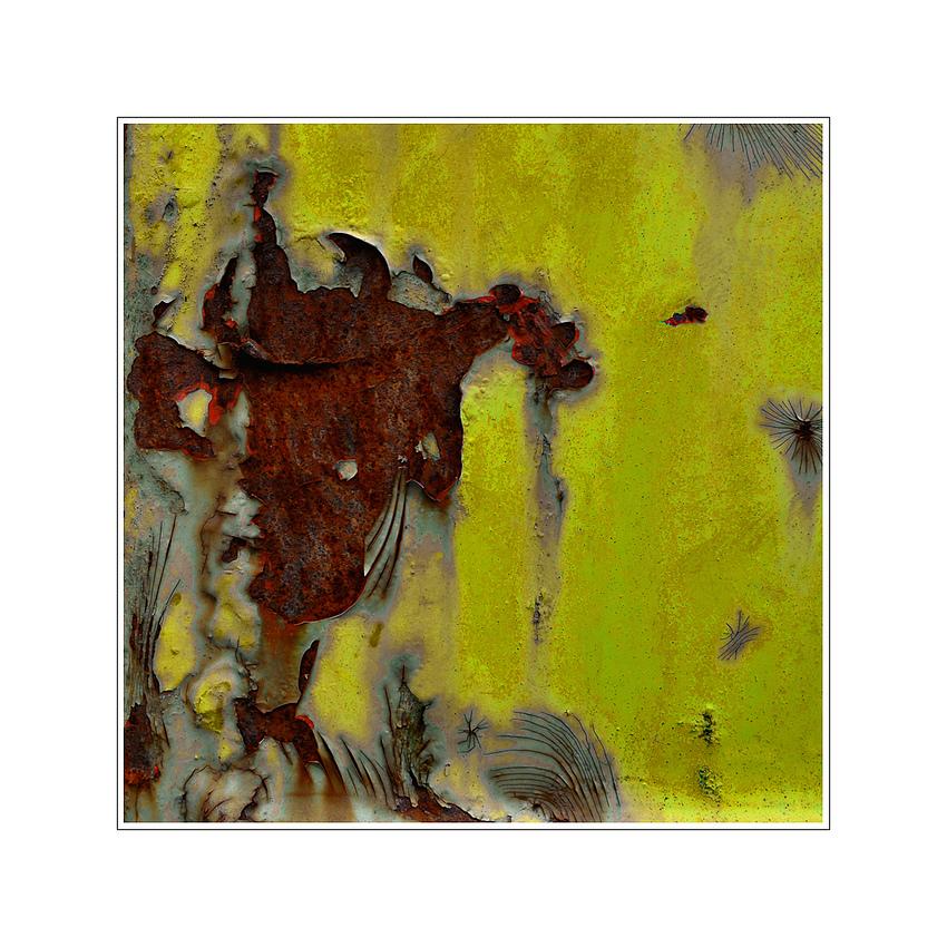 der Stier sah Gelb ...