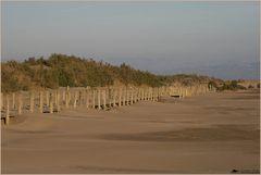 .. der Strand ...