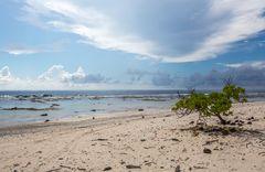 Der Strand von Rangiroa
