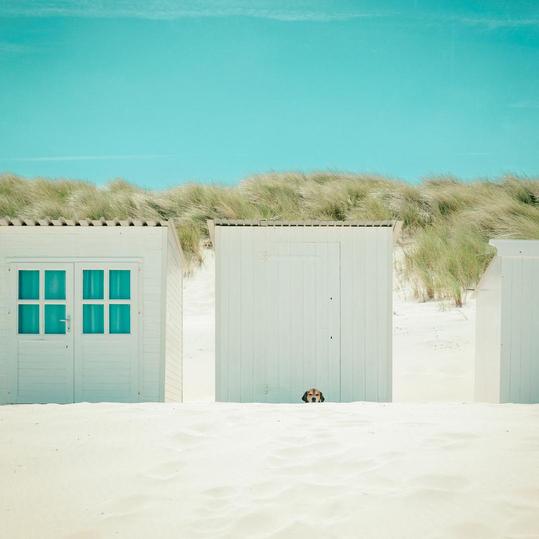 Der Strandwächter