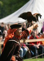 Der Tag des Falken