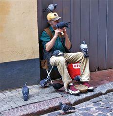 Der Taubenflüsterer von Riga