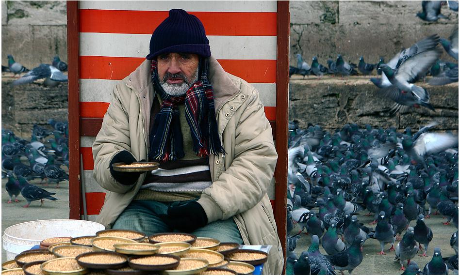 Der Taubenfutterverkäufer