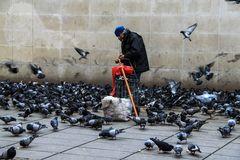 Der Taubenmann