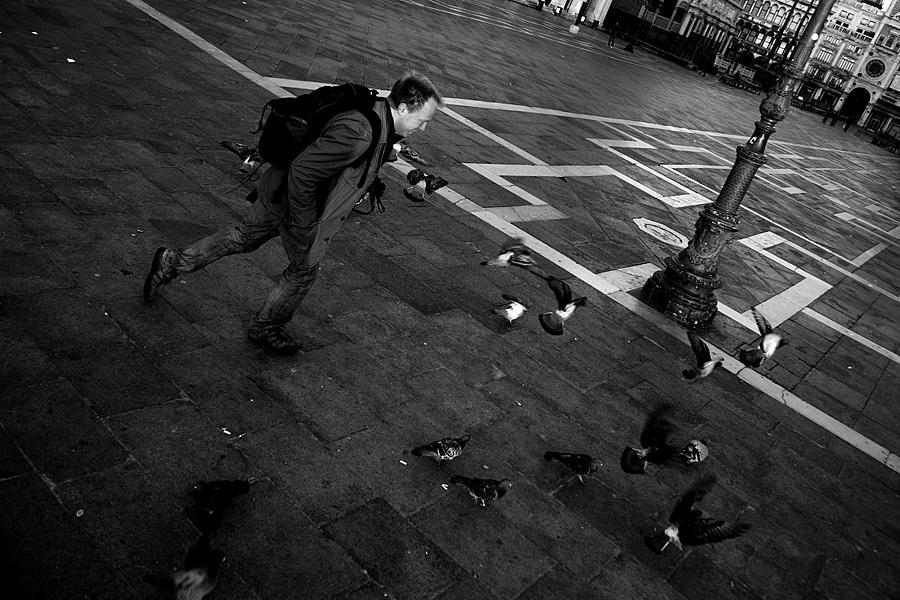 Der Taubenquäler...