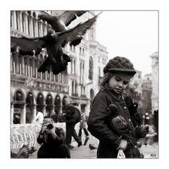 Der Taubenschreck