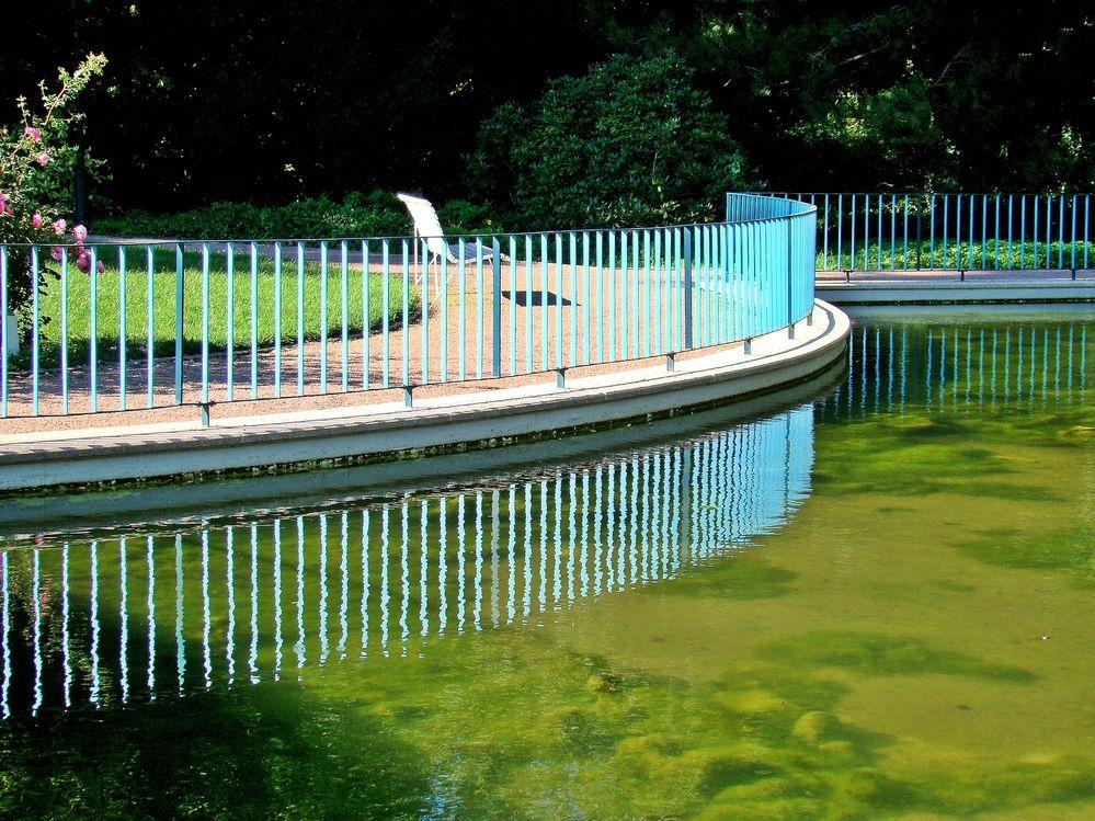 der Teich im Park