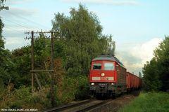Der Telegrafenmast an der Ostbahn bei Rehfelde am 28.09.2008