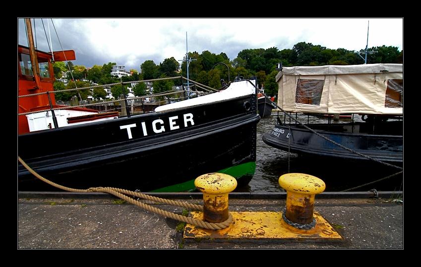 Der Tiger ist nicht los...
