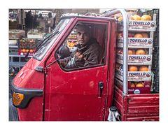 Der Torello Transporter