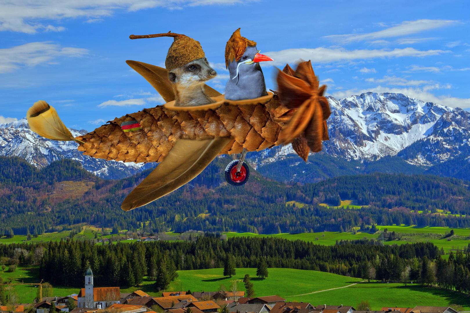 Der Traum Flieger