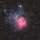 Der Trifid-Nebel im Sternbild Schütze