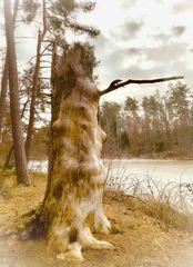 Der Troll im Reichswald