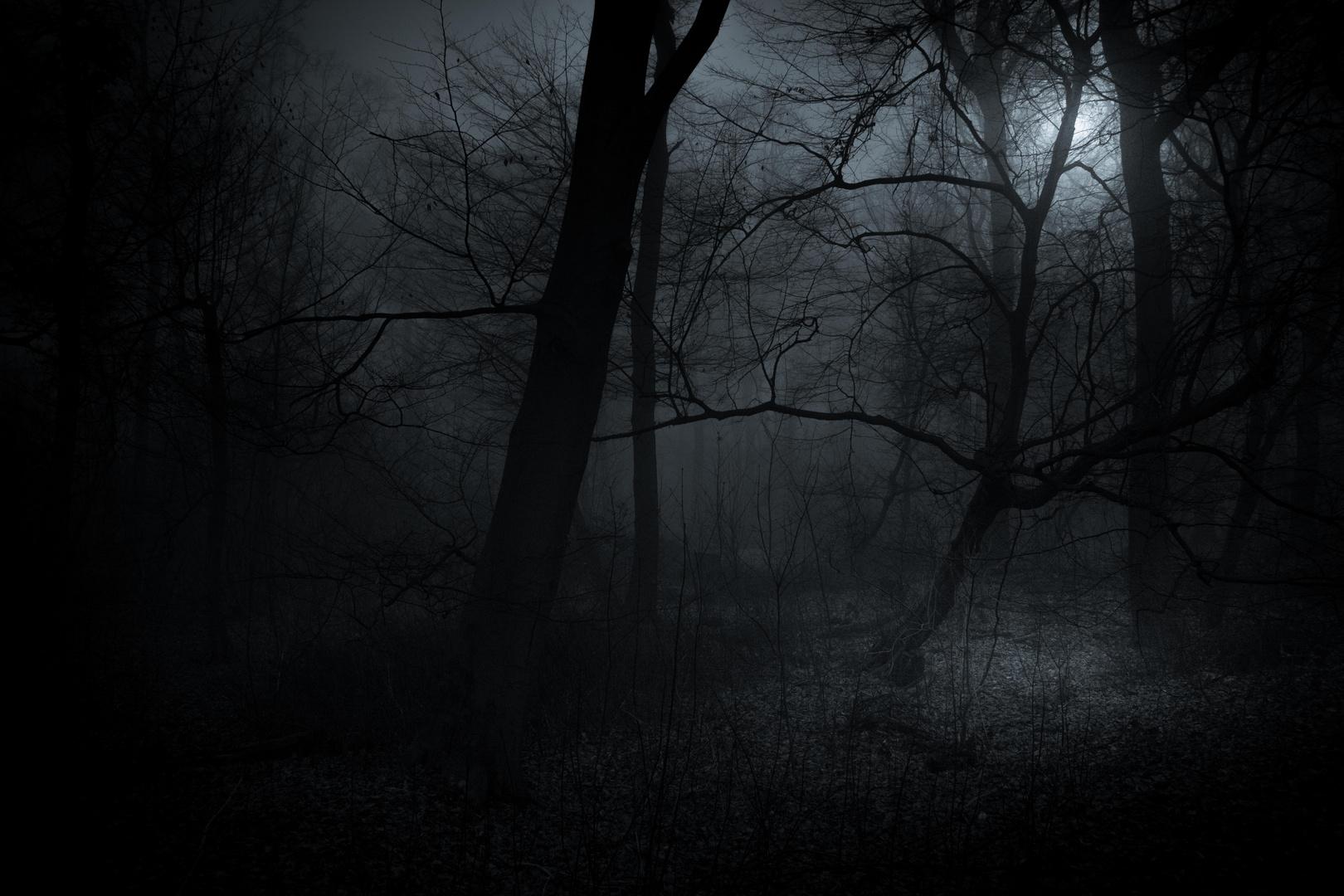 ...der Vampyr