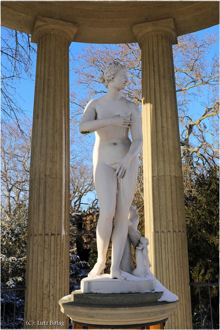 Der Venus ist kalt