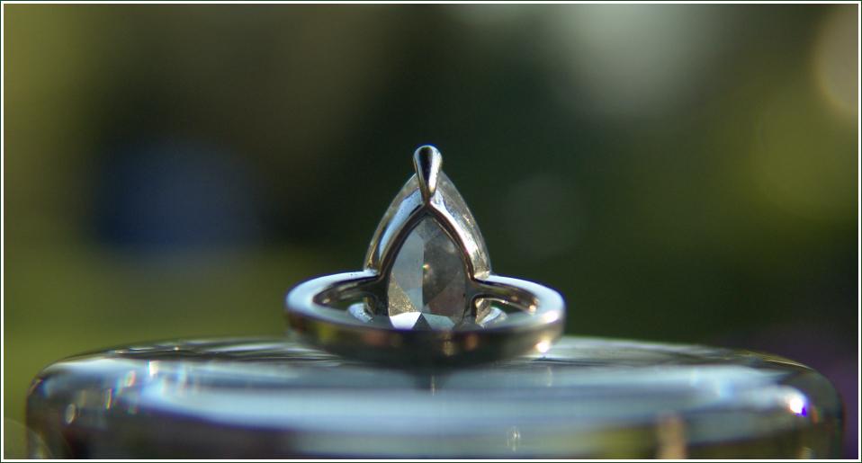 ... der vergessene Ring