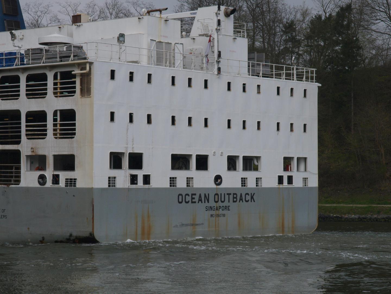 Der Viehtransporter OCEAN OUTBACK von hinten ...