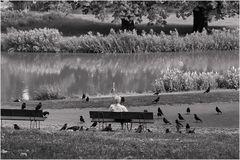 Der 'Vogelflüsterer'