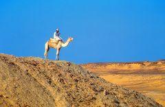 Egypt 1984