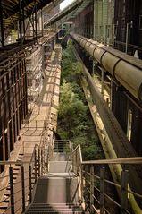... der Wald im Industriedenkmal