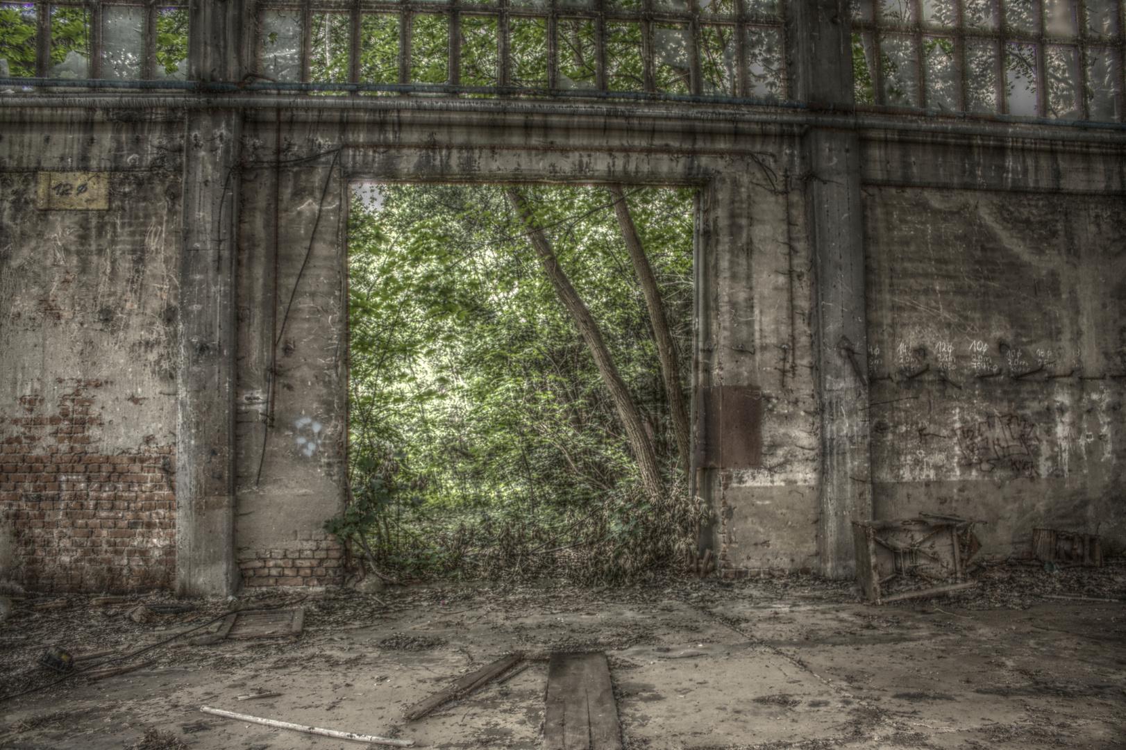 Der Wald steht vor dem Tor
