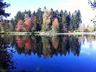 Der Waldsee im Herbst