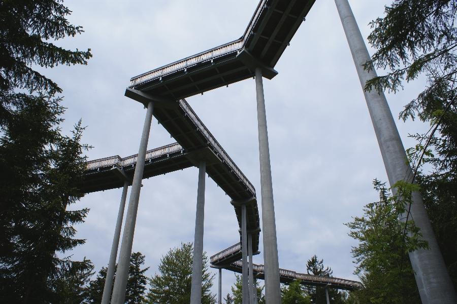 Der Waldwipfelweg...