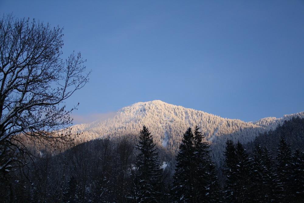 Der Wallberg im Schneeglanz