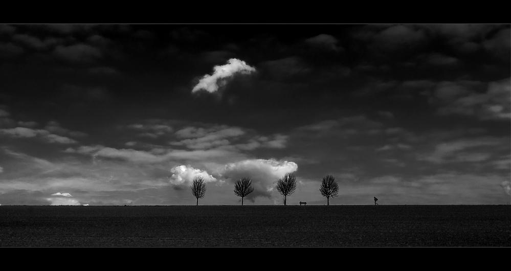 Der Wanderer [2] - SW