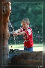 der Wasserbändiger
