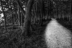 Der Weg (10)