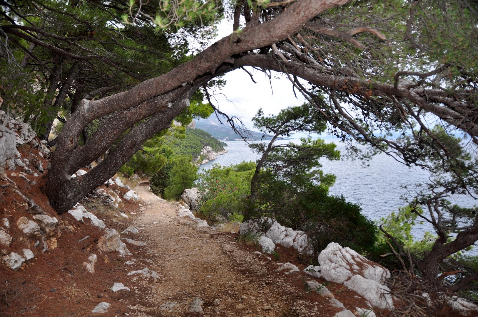 Der Weg am Meer
