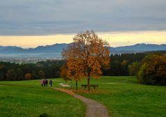 Der Weg, der Baum, die Berge, der Sonnenuntergang