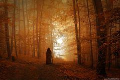 Der Weg des Magiers